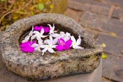 Blumendeko im Ayurveda Resort der Ayurveda Shunyata Villa