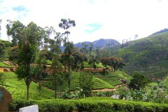 Umland der Ayurveda Shunyata Villa